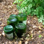 Garden junk. butterfly waterer