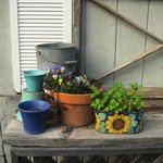 potting shed pots