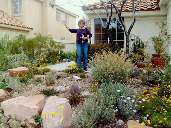 Monika Clauberg in her award winning desert garden near Las Vegas