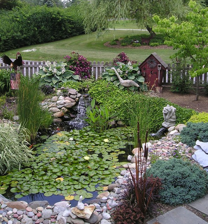 Annie's beautiful pond, for which her shop is named.