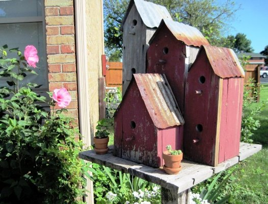 A treasured birdhouse designed by my late husband..... complete with RUSTY tin roofs