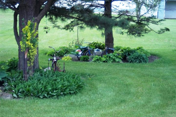 Nancy's 'park' several hundred feet from her house, neatly mowed by husband, Ron!