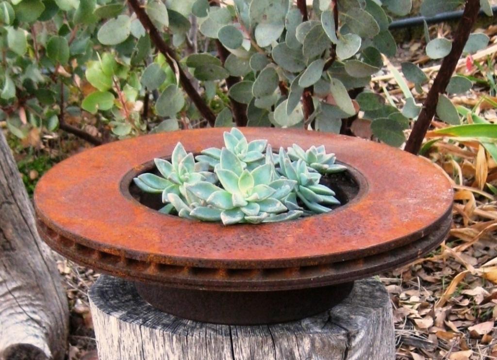 Brake Rotor planter