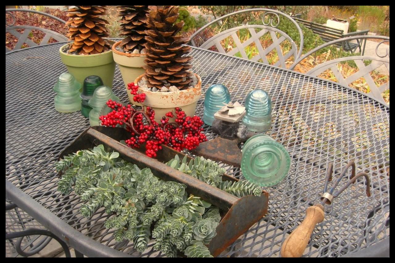 Succulent Tool Caddy Planter
