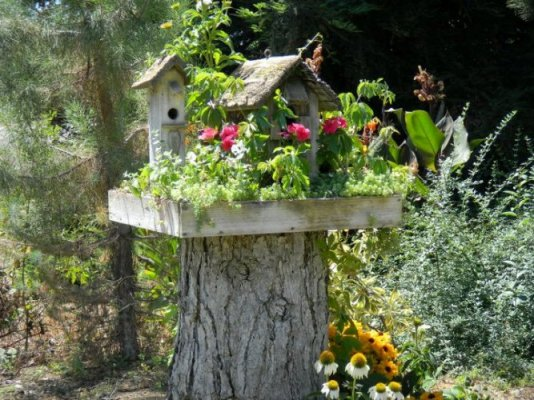 """My bird house, mounted on a stump"""