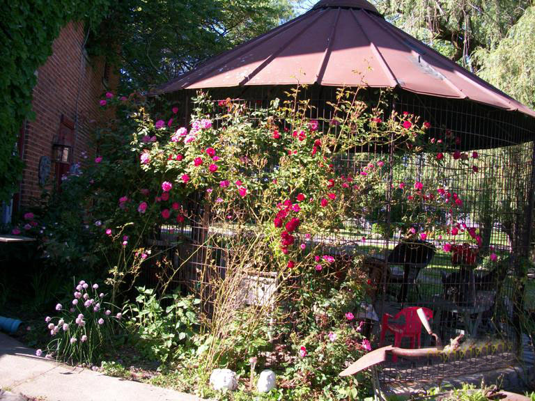 Myra S Gazebo From A Corn Crib Flea Market Gardening