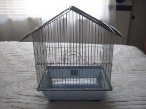 Jeanie's bargain cage