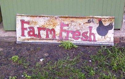 How To Design And Paint A Garden Sign Flea Market Gardening