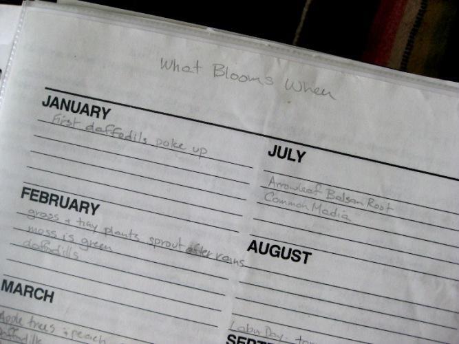Bloom Calendar