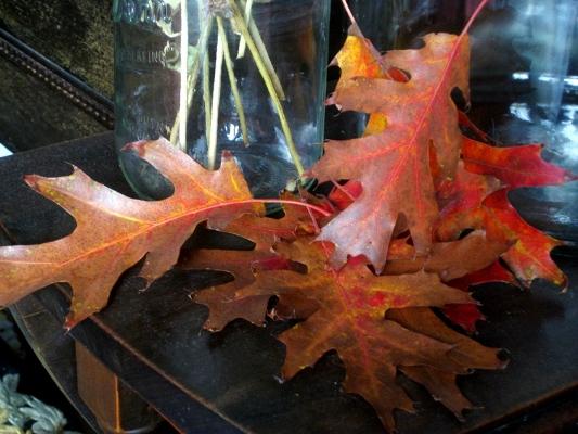 Save a leaf!