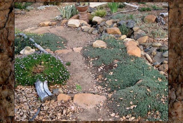 Sue Langley's rock garden steps
