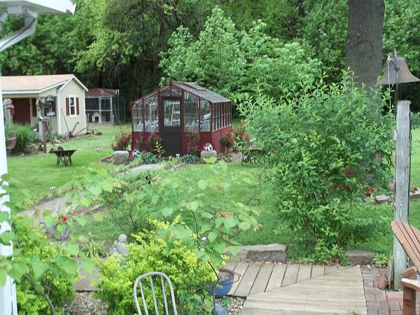 Greenhouse and potting shed