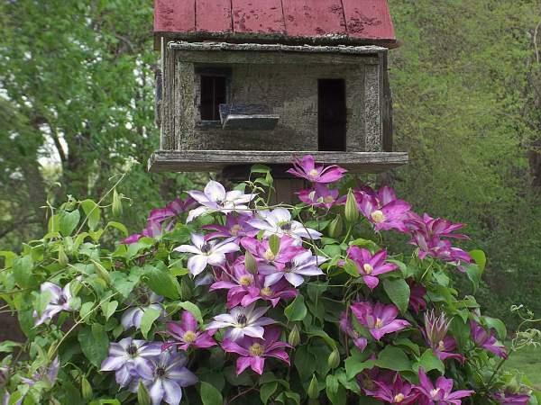 Debbie's vintage birdhouse