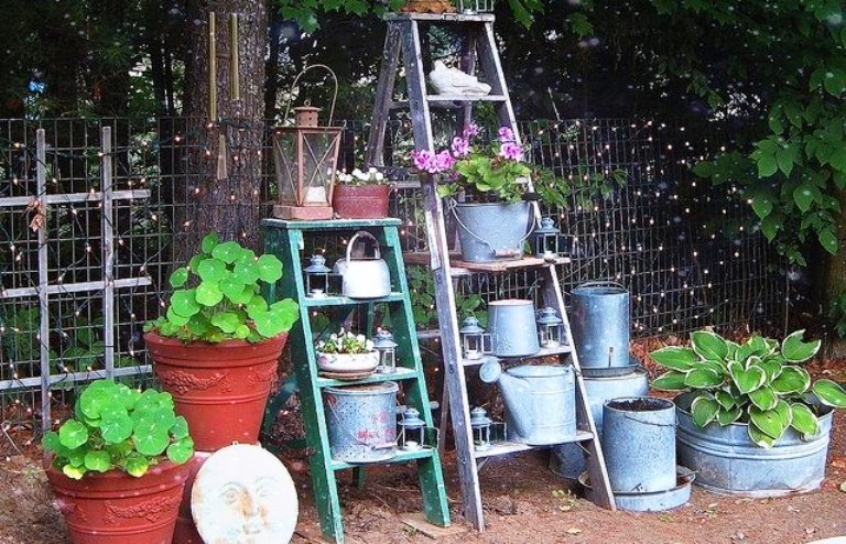 Old ladders reach new heights in the garden