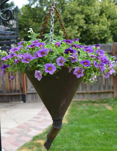 Marie Niemann's funnel full of flowers