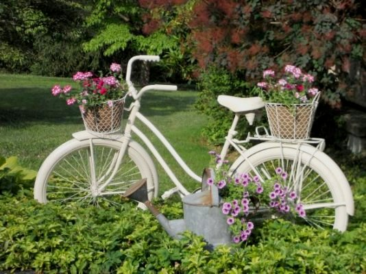 Pedals and Petals: Old bikes in the garden
