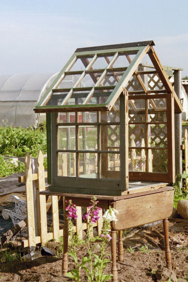 Jean Smith's windowpane greenhouse