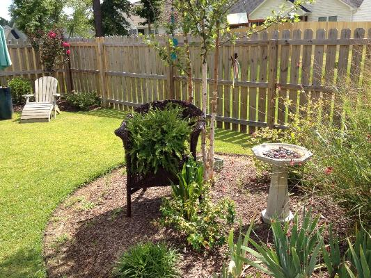 A curbside find, a vintage wicker chair, set in the flower bed.