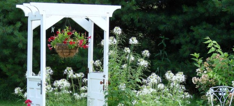 Jeanne Sammons door arbor featured