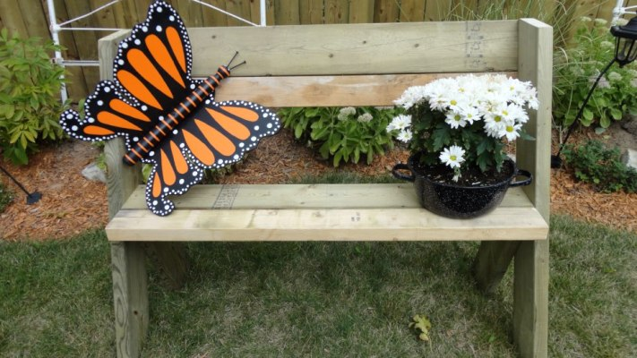 Linda Arbor's butterfly