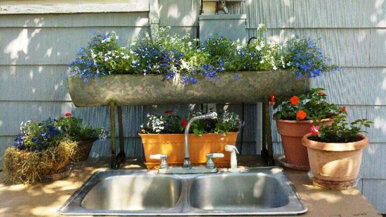 Clean up the sink...  Linda Maddox's kitchen sink.