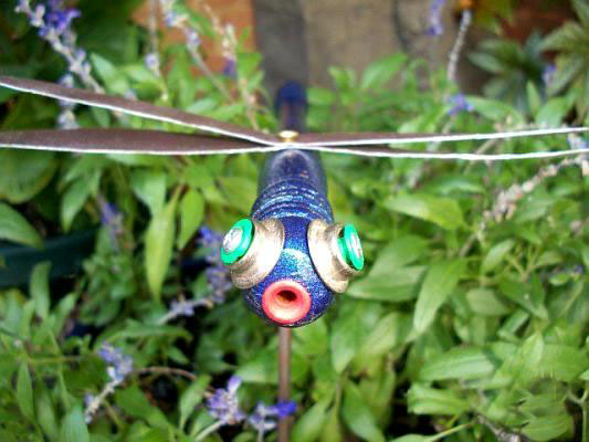 Myra Glandon's colorful dragonfly