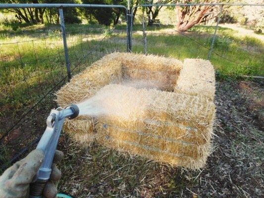 Creating a straw bale garden Flea Market Gardening