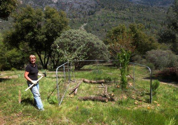Starting the Ranch Gate garden.
