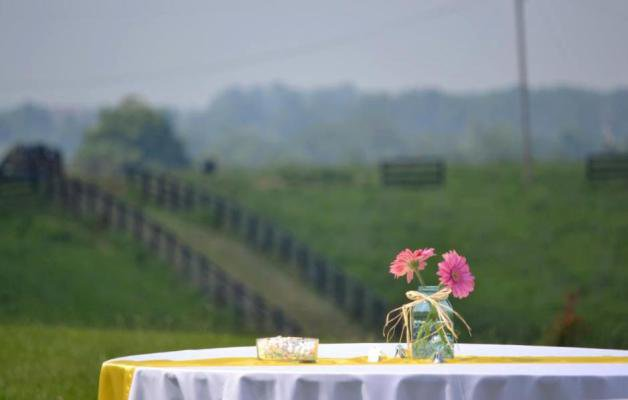 Andrea Hughes' daughter's country wedding