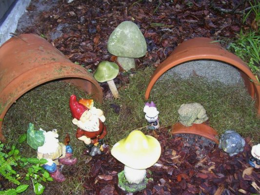 Betty Sneeringer's broken flower pot garden