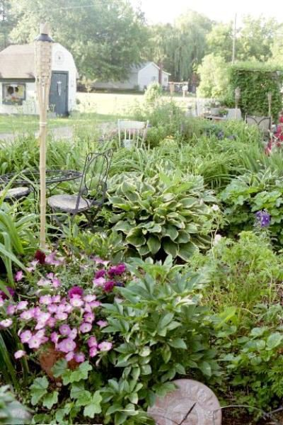 Bistro garden early summer 2012