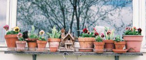 Bistro window pots