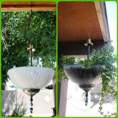 Carmen Whitehead's lampshade planter