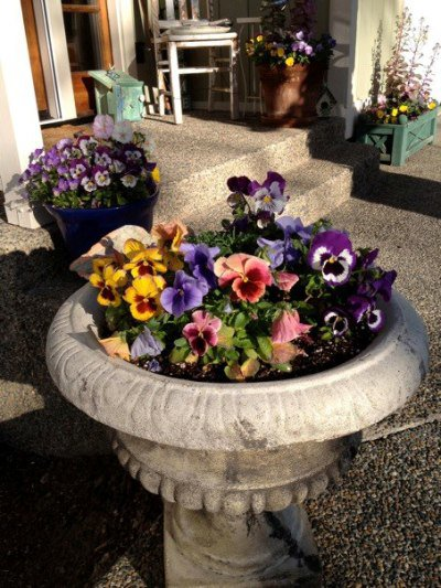 Cheery containers greet guests at the door