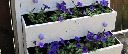 Jeanie's garden dresser drawers