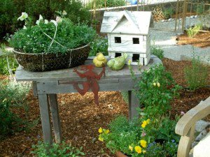 Wire basket, birdhouse and more