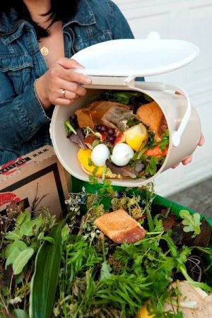 All vegetable trimmings, coffee grounds, eggshells and other kitchen scraps can be collected odor free!