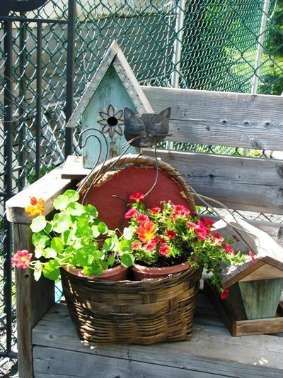 Birdhouses and baskets,...see the cat?
