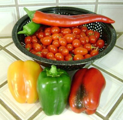 Marie Niemann's 'Maters and peppers