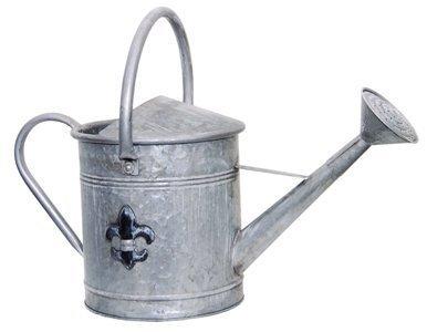 ASTONICA 2-Gallon Fleur-de-Lis Watering Can