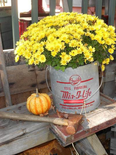 Daphne from Just Enough Antiques's yellow mums!