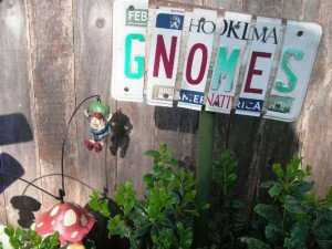Know gnomes?