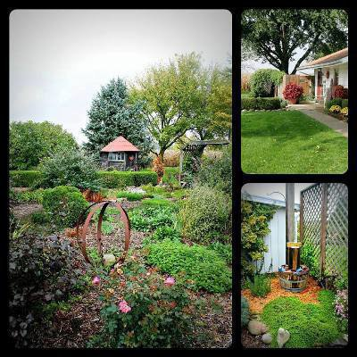 Lisa Collier's views of Sandy's garden