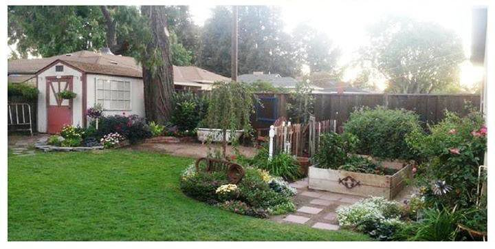 Mrs Smit's FMG garden