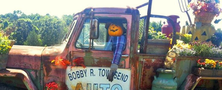 Old Mater truck-featured