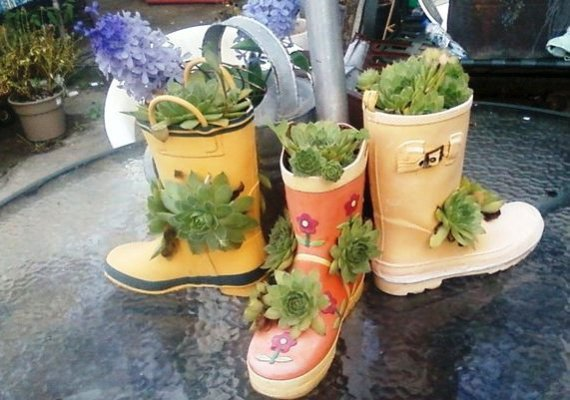 Debbie's cute boots