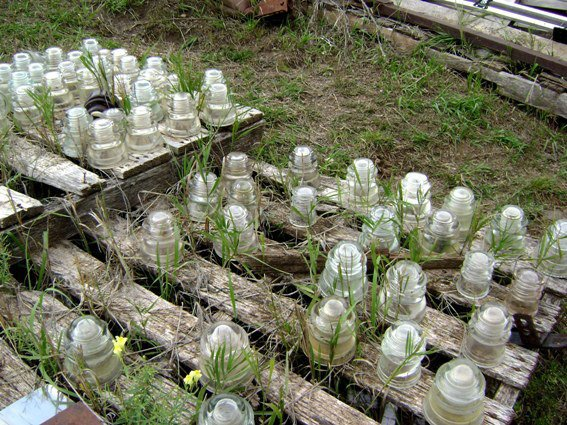 Grass grows where nobody goes....a field of insulators await you