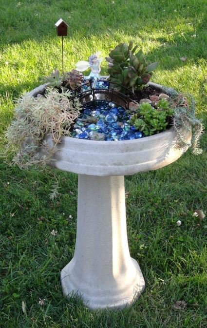Bird bath mini garden