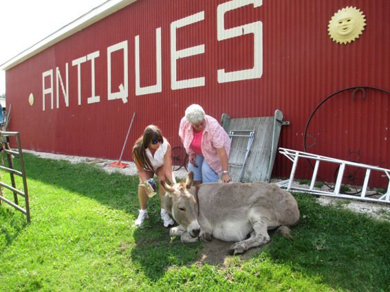 Marie and Nancy with old Donk, the store mascot