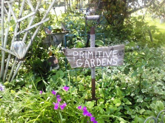Primitive gardens fit in with junk